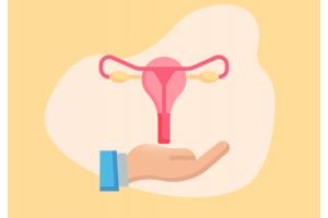 pelvic inflammatory disease treatment